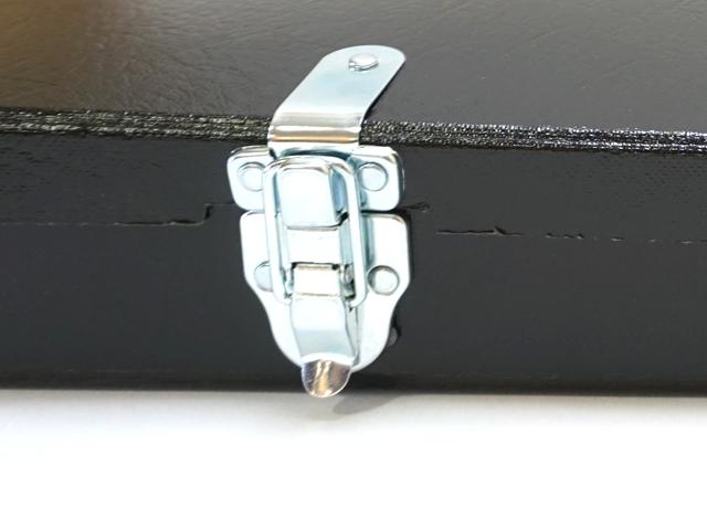 アウリスライア35弦・専用ケース金具部分アップ