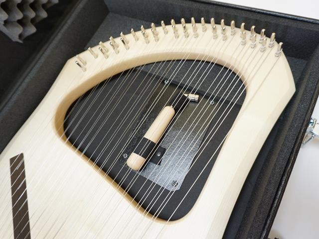 アウリスライア・35弦専用ケース・調弦キーとライアを収めたところ