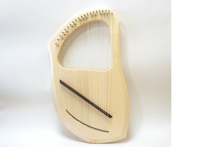 アウリスライア35弦全体