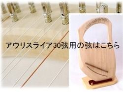 アウリスライア30専用弦