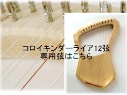 コロイキンダー12弦専用弦