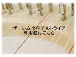ザーレム小型アルト用弦