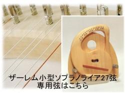 ザーレム小型ソプラノ弦
