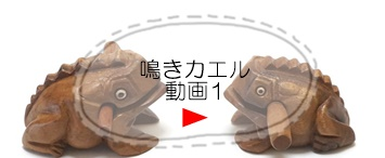 鳴きガエル動画バナー