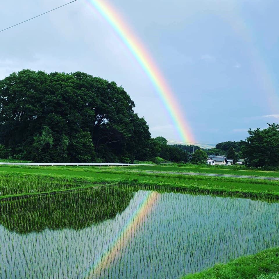 つれづれ380 虹のずれ
